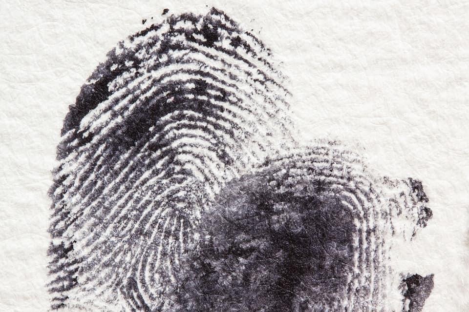 requisitos para estudiar criminología en España